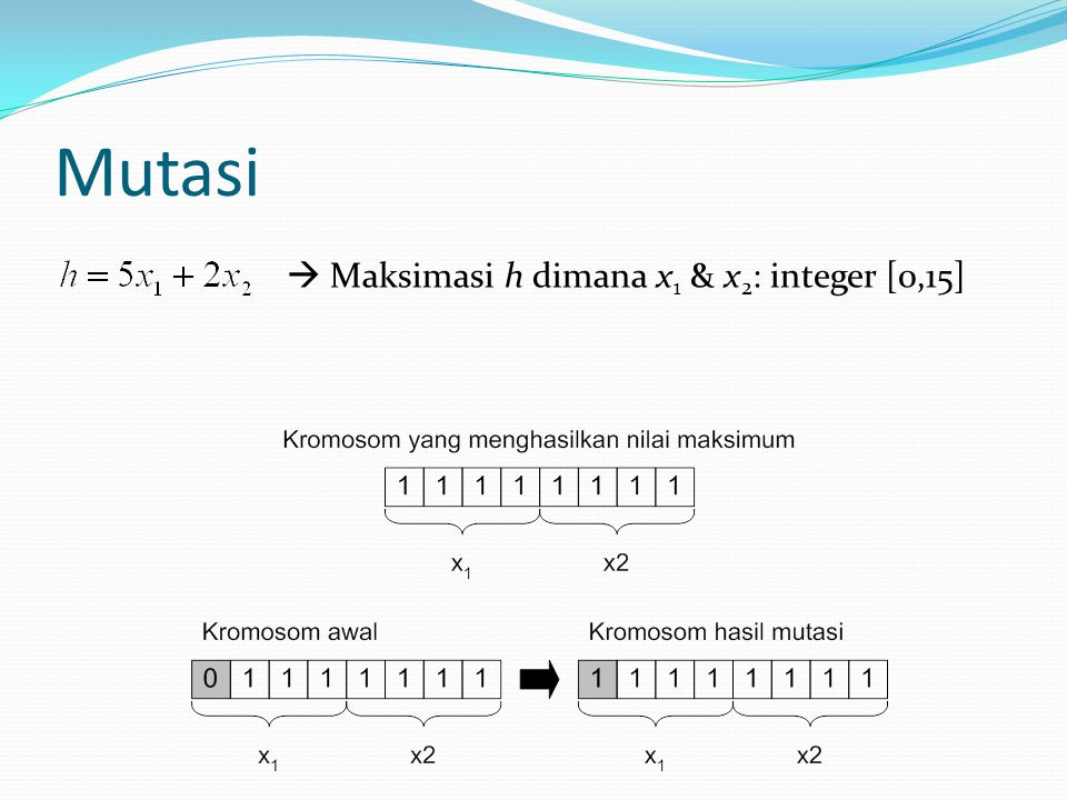 Mutasi  Maksimasi h dimana x1 & x2: integer [0,15]